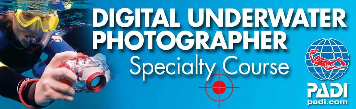 Digital Undertwater photographer specialty Alpha Divers Larnaca Cyprus