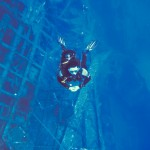 Alpha Divers Larnaca ZENOBIA wreck 0014