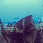 Alpha Divers Larnaca ZENOBIA wreck 0020