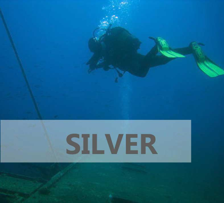 Silver Advanced Open Water Course
