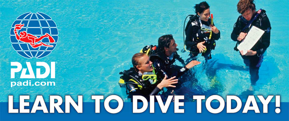 padi_learntodive with Alpha Divers