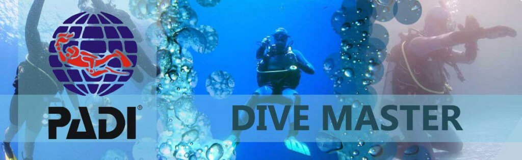 Become Dive Master with Alpha Divers