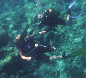 Alpha Diver with Open Water students