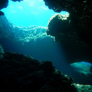 Beautiful adventure with Alpha Divers, shore dive tunnels and caves