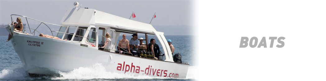 Dedicated diving Boats for Alpha Divers Dive Centre
