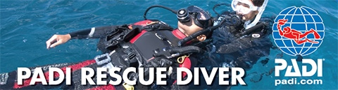 Start Rescue Diver Course  With Alpha Divers