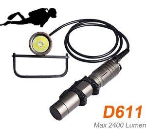 D611 canister light