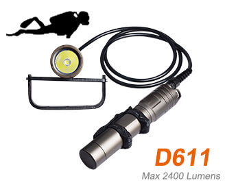 D611 canister light