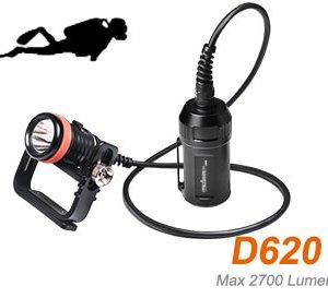 D620 canisterlight