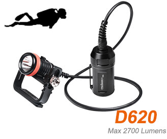 D620 canisterlight